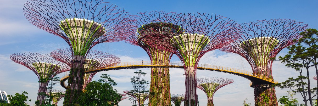 InterContinental Singapore Meetings Gardens By The Bay Supertrees