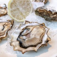 We heard you - $2 Oysters Thursdays have been extended! There's no reason to abstain from indulgence