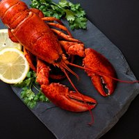If you have a hankering for this conveted crustacean, join us for Grilled Lobster Nights!  Every Mon